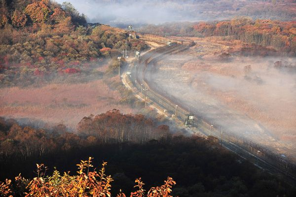 (The unspoilt wilderness of the DMZ.  National Geographic.)